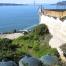 Alcatraz_Island_Rainwater_c